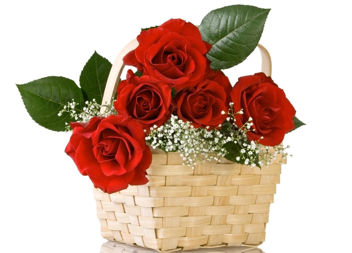 Cách Cắm Hoa Đẹp - Không khó để bạn có một lẵng hoa đẹp, Eva.vn chia sẻ cách cắm hoa nghệ thuật Đẹp Nhất, tự tay cắm hoa đẹp ngày lễ đặc ...