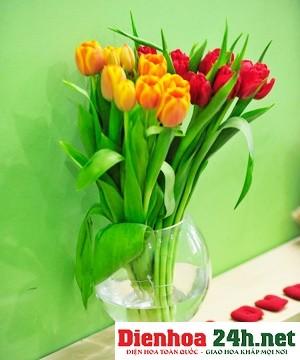 Spring Tulip I